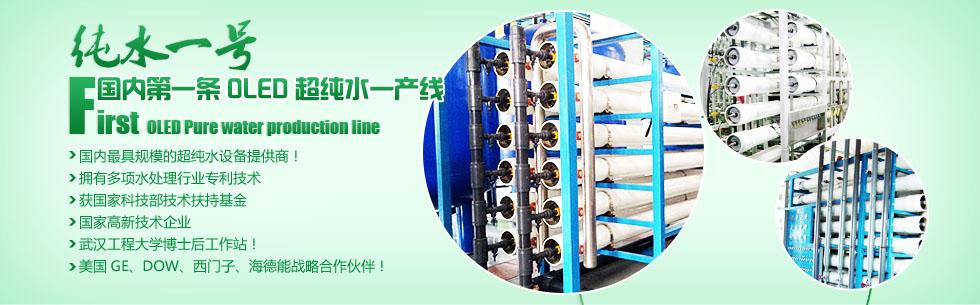 国内第一条OLED显示项目超纯水系统提供商